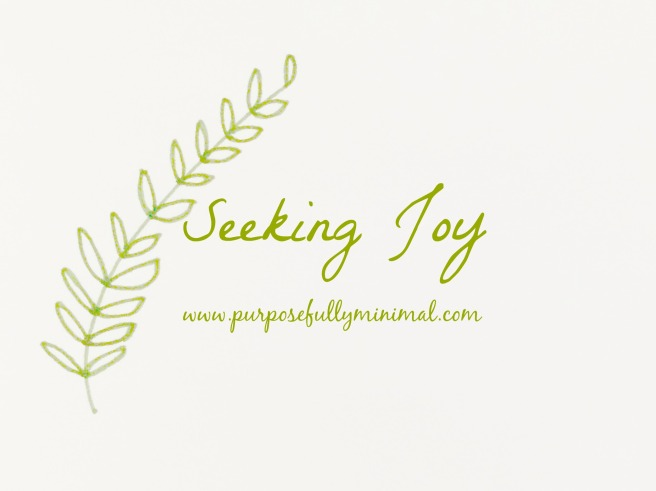 blog4seekingjoy