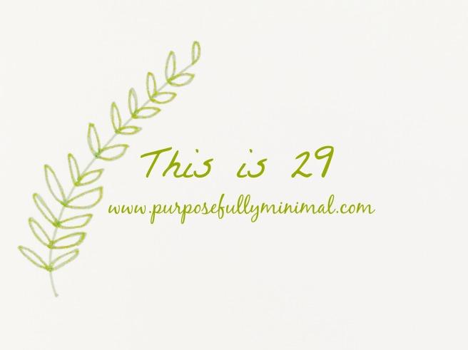 blog15thisis29